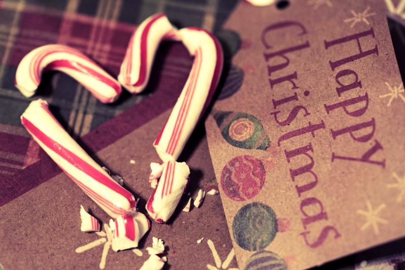 day353_happychristmas